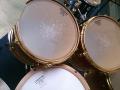 ASPR Drum Heads